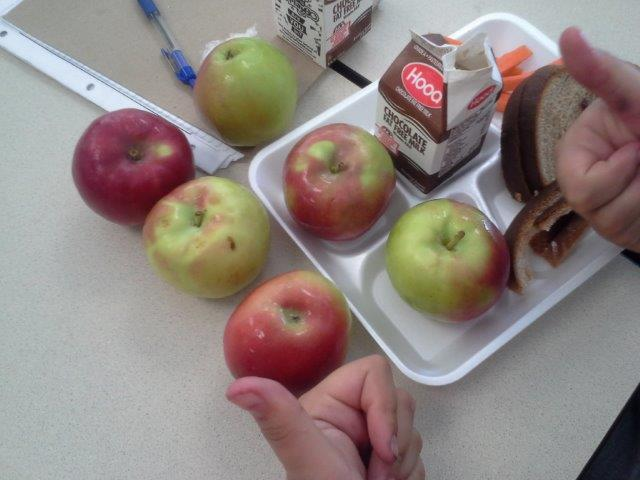 A Call for More Vegetarian Options in the Cafeteria