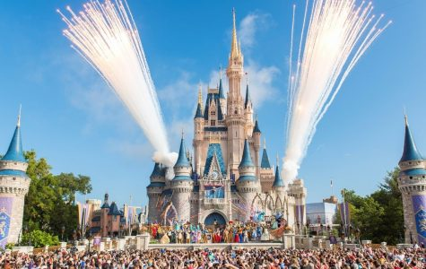 Looking For Summer Fun? Head to Disney!