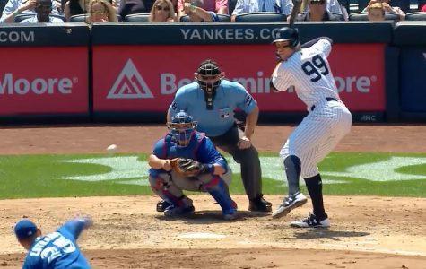 Baseball Season in Full Swing